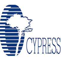 Cypress Semiconductor it engineer